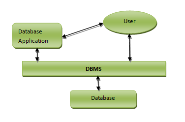 components-of-database