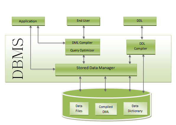 Notes On Dbms  Structure Of Dbms