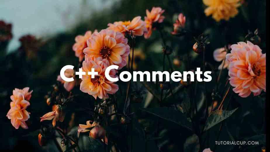 C++ Comments