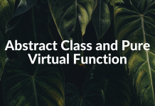 Abstract Class and Pure Virtual Function