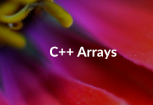 C++ Arrays