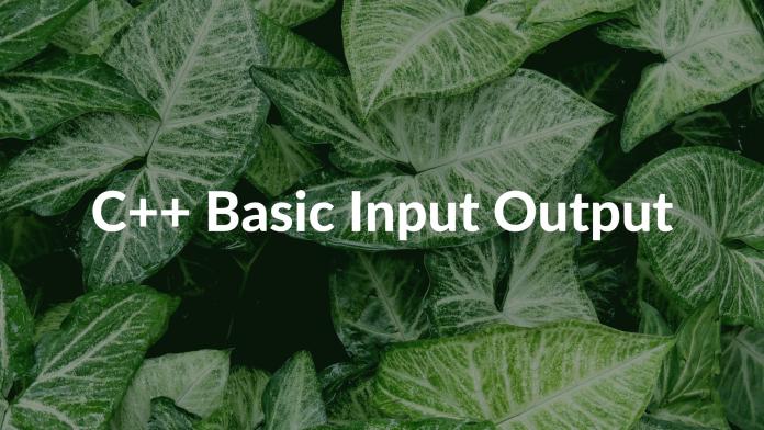 C++ Basic Input Output