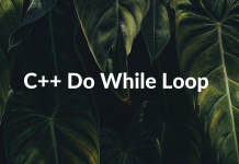 C++ Do While Loop