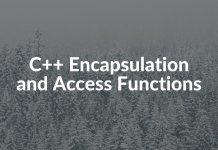 C++ Encapsulation and Access Functions