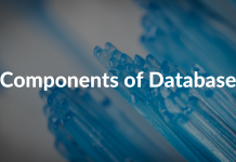 Components of Database