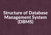 Structure of Database Management System (DBMS)