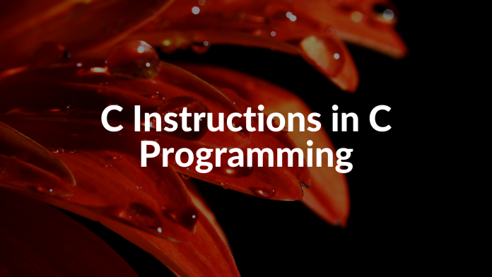 C Instructions in C Programming