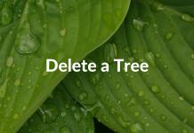 Delete a Tree