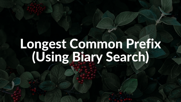 Longest Common Prefix (Using Biary Search)