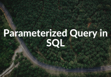 Parameterized Query in SQL
