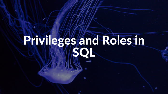 Privileges and Roles in SQL