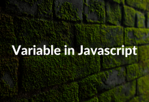 Variable in Javascript