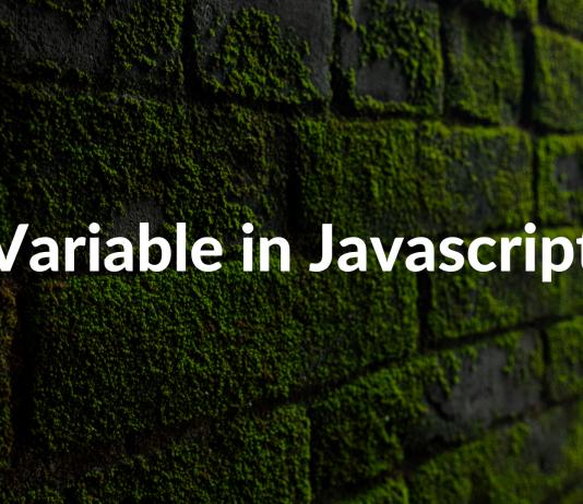 Variable in Javascript
