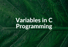 Variables in C Programming