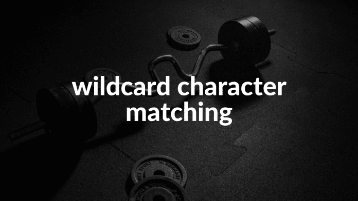 wildcard character matching